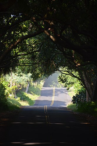 Hawaii Route 137 - Image: The Red Road panoramio (1)