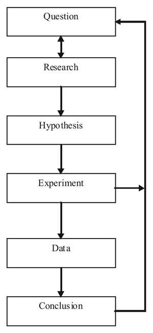 Diagram showing the steps of the scientific me...