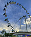 The Singapore Flyer - Now open (2318630247).jpg