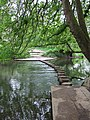 The Stepping Stones - geograph.org.uk - 158891.jpg