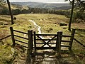 The footpath southwards from Stanage Plantation - geograph.org.uk - 752618.jpg