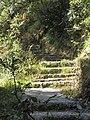 The path divine.jpg