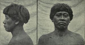 The races of man, figure 171 Bakairi (IA deniofmanoutlinraces00rich).png