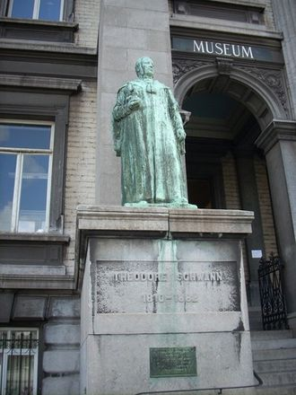 Theodor Schwann - Bronze statue of Theodor Schwann at the entrance of the Institute of Zoology, University of Liege, Belgium