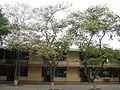 Trường THCS Kim Đồng.jpg
