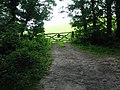 Track to gate leading to Knowl Hill - geograph.org.uk - 860335.jpg