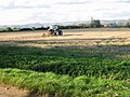 Tractor at work near Apuldram Manor Farm - geograph.org.uk - 1022034.jpg