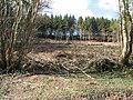 Tree clearance above Daren Brook - geograph.org.uk - 714523.jpg