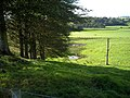 Trees and Fields South of Dalton - geograph.org.uk - 565111.jpg