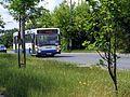 Trolejbus.linii.23.ulica.Rdestowa.przed.przystankiem.Paprykowa.kierunek.Stocznia - 001.JPG