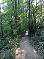Tryon Creek State Natural Area 2017 02.jpg