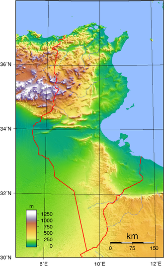 Geography of Tunisia - Topographic map of Tunisia.