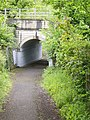 Tunnel under railway near Bowling - geograph.org.uk - 459667.jpg