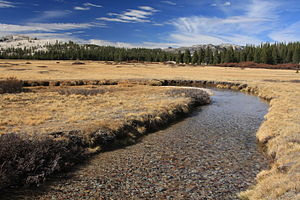 A meandering river in Tuolumne Meadows in Autumn.