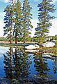 Tuolumne Pond Reflections, Yosemite NP 5-15 (26307497381).jpg