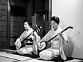 Two geishas playing shamisen.jpg
