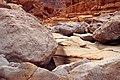 Tze'elim Canyon 16388 (11852331434).jpg