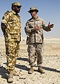 U.S. Marine Corps Lt. Col. Kevin Collins, right, the commanding officer of Combat Logistics Battalion 26, 26th Marine Expeditionary Unit, and a Qatari Emiri Land Force officer discuss training exercises 130429-M-HF949-010.jpg