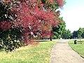 Upper Arlington, Ohio (27731656125).jpg
