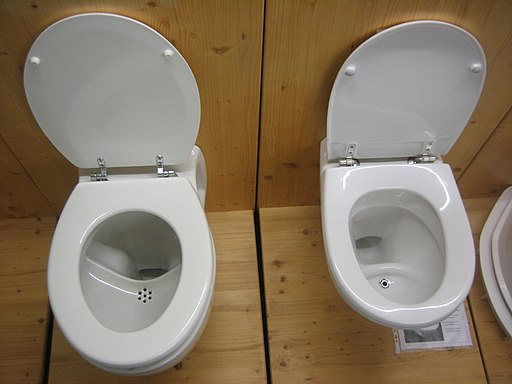 Urine-diversion flush toilets (3284024725)