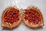Urucum (bixa orellana) seeds.jpg