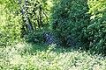 Vahrn Voitsberg (BD 17807 6 05-2015).jpg