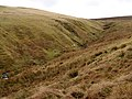 Valley of the Inch Burn - geograph.org.uk - 354968.jpg