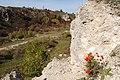 Velykyi-Hlybochok-vidslonennia-sarmatu-14090598.jpg