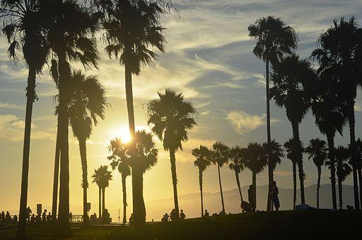 Venice, Los Angeles, CA 04