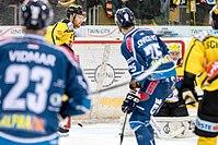 Vienna Capitals vs Fehervar AV19 -142.jpg