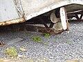 Vierville-sur-Mer d-day museum 2008 PD 13.JPG