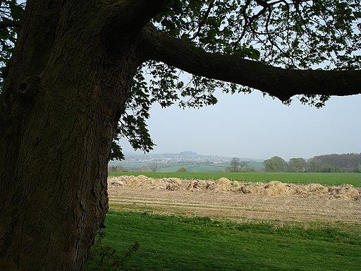 View from Bradbury Hill Fort - panoramio
