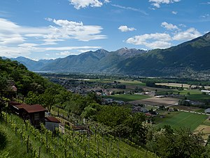 Locarno - Vineyards above Locarno