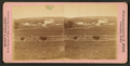 View of a farm with cattle roaming, Dubuque, Iowa, by Root, Samuel, 1819-1889.png