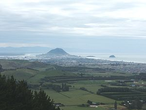 Papamoa - Image: View to Mount