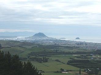 Papamoa - Image: View to Mount