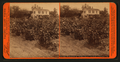 Vineyards at Willow Date, San Gabriel Mission, Cal, by Taber, I. W. (Isaiah West), 1830-1912.png