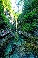 Vintgar Gorge (35642741182).jpg
