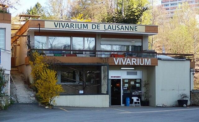 photo of vivarium