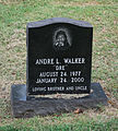Walker grave - Glenwood Cemetery - 2014-09-14.jpg