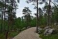 Walking trail, Inari, Finland (13) (36288019540).jpg