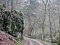 Wanderweg - panoramio (123).jpg
