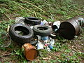 Waste collected in a nature reserve... (2681935103).jpg