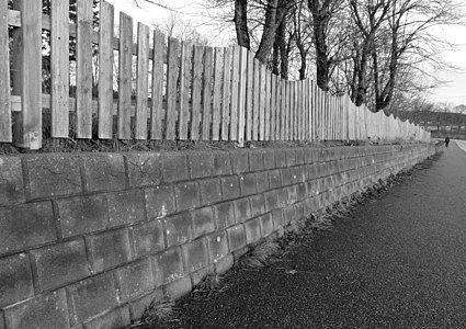 Wavy fence and a wall B&W version
