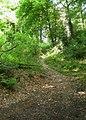 Weg im Wald bei Hoffnungsthal - geo.hlipp.de - 13971.jpg