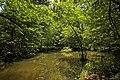 Weiher, Landschaftsschutzgebiet Nagoldtal, Kennung 2.35.037, 02.jpg