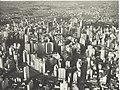 Werner Haberkorn - Vista aérea do centro da cidade. São Paulo-SP 8.jpg