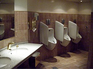 Urinal - Urinals with privacy barriers in a men's washroom in Vienna, Austria