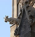 Wien Stephansdom Wasserspeier 2.jpg