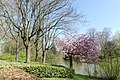 Wilhelminapark, Breda P1460800.jpg